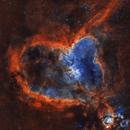 Heart Nebula SHO,                                Matt Proulx