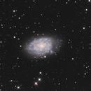 NGC 7793,                                Mark