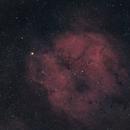 IC 1396 and the Elephant Trunk 2019,                                Bob Stevenson