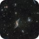 NGC 660 @ DSW,                                Miles Zhou