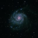 M101 - Pinwheel Galaxy,                                Bob Stewart
