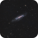 NGC 4236 Galaxy in Draco,                                Elmiko