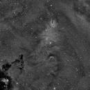 NGC 2264 HA,                                DricotPhilippe