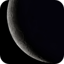 Crescent Moon- 3/2021,                                William Maxwell