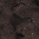 Barnard 67 / 75 / 261 / 262 / 269,                                Gary Imm