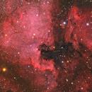 North America Nebula & Pelican nebula,                                Steed Yu