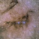 LBN 134 & VdB 126 - The Loch Ness Nebula,                                Rafael Schmall