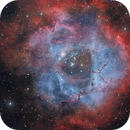 Rosette Nebula complex,                                Peter Myers