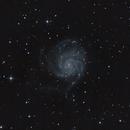 M101,                                Davy HUBERT