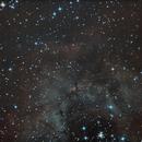 Rosetten-Nebel,                                Jens Hartmann