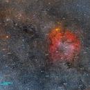 Elephant's Trunk Nebula in IC 1396 Complex and Surroundings,                                Die Launische Diva