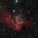 The Wizard Nebula,                                Gary