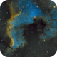 NGC 7000 North American Nebula in Hubble Palette,                                JohnAdastra