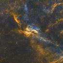 Propellar Nebula,                                Dan Kusz