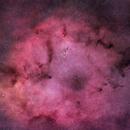 IC 1396, The Elephant's Trunk Nebula, Cep,                                Vladimir Machek