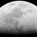 Half moon, 27th Dec.,                                Will Thompson