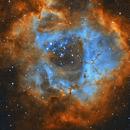 Rosette Nebula in SHO,                                Brian Meyerberg