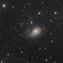 NGC 772,                                Mark