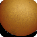 Sun with sunspots AR2767 and AR2768 and Prominences,                                RonAdams