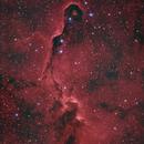 IC 1396A,                                Gobart