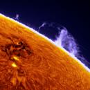 AR12443 close to the Sun limb and prominence (H-a band),                                Łukasz Sujka