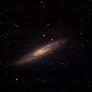 NGC 253 - Sculptor,                                Dave