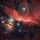 Horsehead Nebula Region,                                eddxtcteam