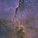 IC1396 - The Elephant Trunk Nebula,                                Adam Jaffe