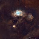 M8 And M20,                                Chris Troiani