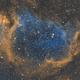Soul Nebula,                                Tim Polk