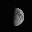 Luna!,                                Zach Coldebella