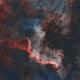 Cygnus wall,                                lukfer