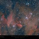 Thackeray's Globules in 'The Running Chicken Nebula' a.k.a. IC 2948,                                Paul Baker