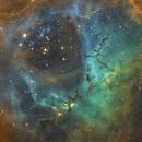 Rosette Nebula,                                Phill Hinkler