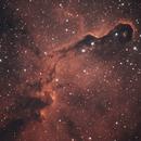 IC 1396 The Elephant Trunk Nebula (Cep),                                Marko Emeršič