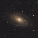 M81,                                Max Ullberg