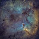 Elephant's Trunk Nebula - deeper color SHO processing,                                Abraham Jones