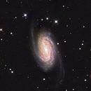 NGC2903,                                Paul R. Hitchcock
