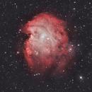 The Monkey Head Nebula (NGC 2175),                                Dan Gallo