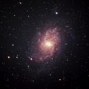 M33 Croped,                                Matthew Terrell