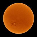November Sun 2020,                                Onur Atilgan
