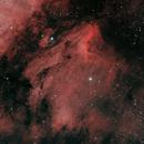Pelican Nebula HOO,                                Jason Doyle Sr