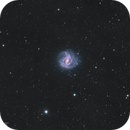 Messier 83,                                NelsonAstrofoto
