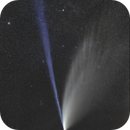 Comet NeoWise at its best,                                Daniele Gasparri