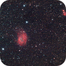 IC2162 and SH2-261,                                Spencer Hurt