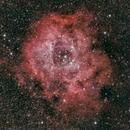 NGC 2238, Rosettennebel,                                Gerhard Aschenbrenner