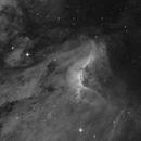 Pelican in Ha (Canon 350D MONO),                                Luis Campos