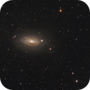 M63 Sun flower galaxy,                                Jocelyn Podmilsak