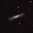 NGC3628,                                Gerd Rudolf