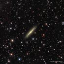 NGC 2310: a Boxy Lenticular Galaxy,                                Russ Carpenter
